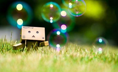 Danbo, paper box, bubbles, grass, grass field