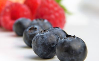 Blueberries, fruits, close up