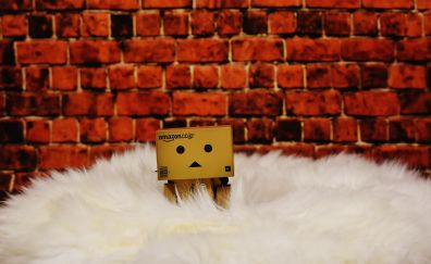 Danbo, paper box sitting