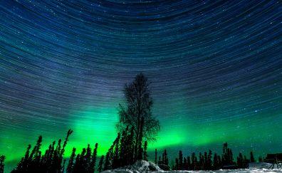 Beautiful night of the northern lights of Alaska