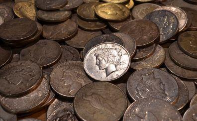 Dollar, coins, money