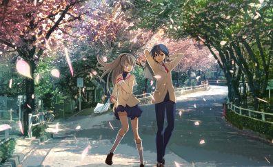 Tomoyo Sakagami, Tomoya Okazaki, Clannad, anime, walk