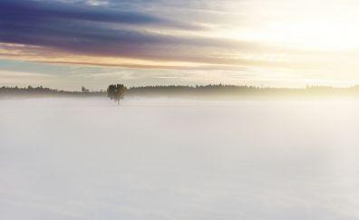 Winter snow, clouds, mist