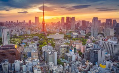 Tokyo city, sunset, buildings, aerial view