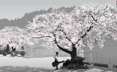Cherry blossom, anime girl, outdoor