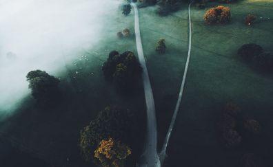 Mist, fog, landscape, roads, aerial view