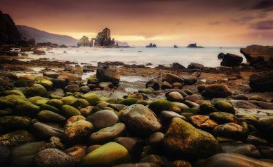 Coast, rocks, nature, moss, sunset, sea