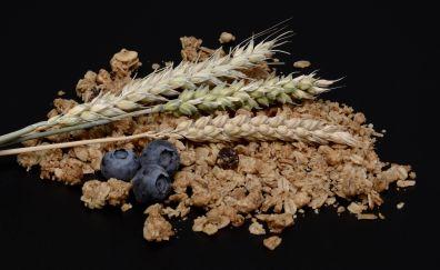 Wheat, grass threads, food, blueberries, fruits