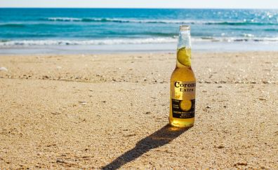 Corona extra beer bottle at beach