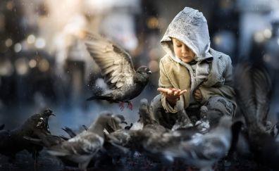 Little boy, birds