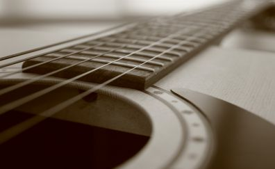 Acoustic guitar strings, sepia, musical instrument