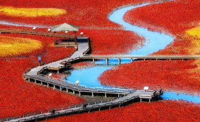 Landscape, wooden bridge, lake