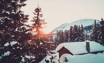 Cabin, winter, snowfall, sunrise, tree, mountains, 5k