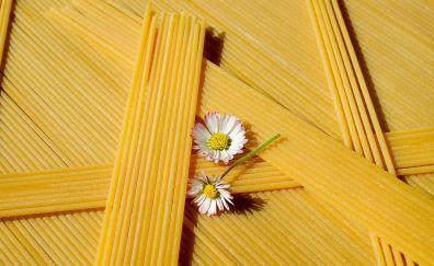 Spaghetti, noodles, pasta, food