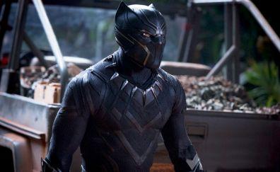 Chadwick boseman, black panther, 2018, movie