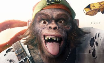 Beyond Good and Evil 2, video game, monkey face
