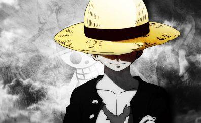 Monkey D. Luffy, hat, anime boy, One Piece