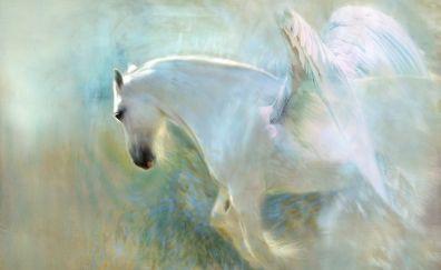 Pegasus, white horse, art, 4k