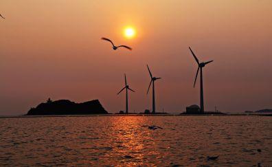 Sunset, turbines, windmills, coast, birds, lighthouse, 4k