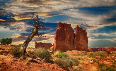 Bryce canyon, desert cliff, national park, landscape