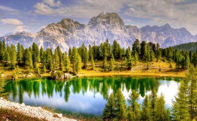 Dolomites, mountains, lake, reflections, tree