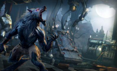 Killer Instinct, wolf, video game