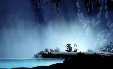 Hollow Knight, Video game, team cherry