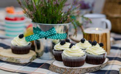 Picnic, cupcakes, cake, dessert, 4k