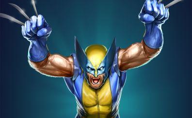 The wolverine, x-men, superhero, marvel, artwork