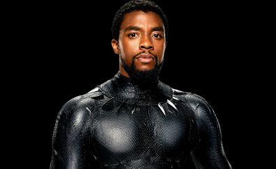 Chadwick Boseman, Black Panther, superhero, movie