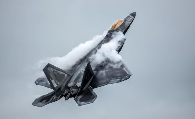 F-22 Raptor military fighter aircraft