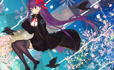 Fate/grand order, purple hair anime girl, anime