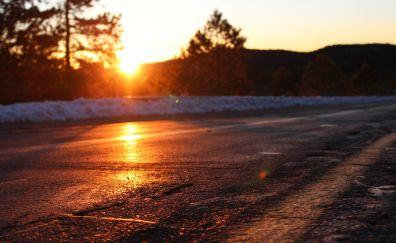 Sunrise, sun, nature, road, summer