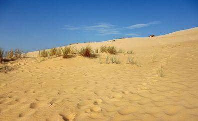 Sand dunes, landscape