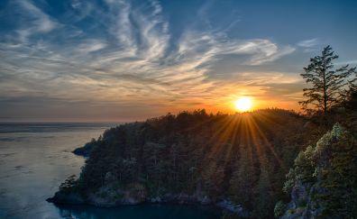 Sunset, trees, aerial view, coast, sea, skyline, sunlight