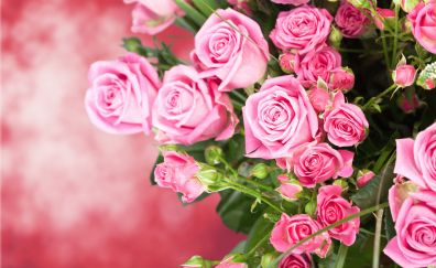 Pink roses bouquet, flowers, beautiful flowers