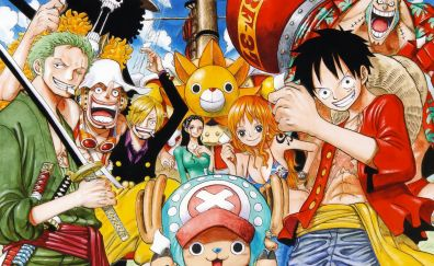 All pirates, one piece, anime