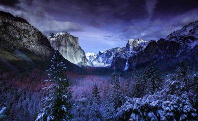 Yosemite valley, trees, sunset, winter, nature, 5k