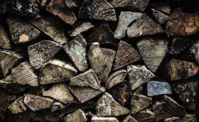 Firewood, texture, pattern, wooden log, 4k