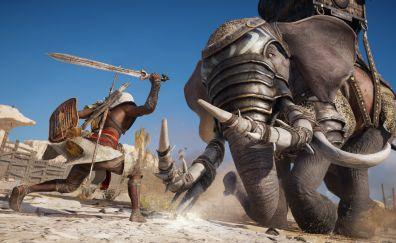 Assassin's creed origins, elephant, fight, 4k