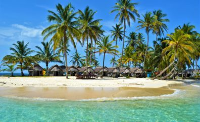 Resort, tropical beach, sea, palm tree, 4k