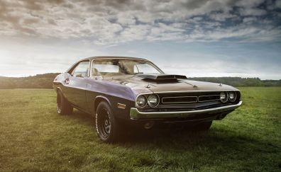 Dodge challenger, race car, 4k