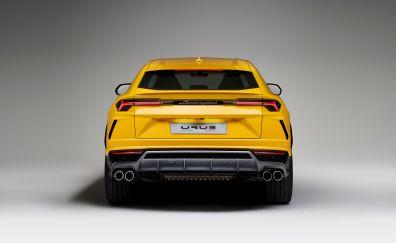 Lamborghini Urus, rear view, 4k