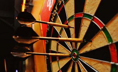 Darts on dart board close up