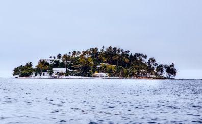 Island, panama sea, palm trees
