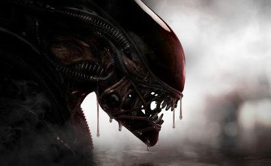 Alien, predator, creature, 5k
