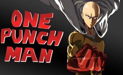 Saitama of One punch man anime