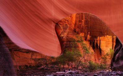 Zion national park, rocks, nature