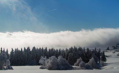 Wasserkuppe mountain forest winter snow storm