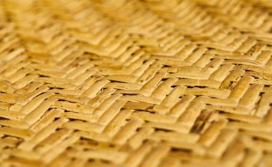 Grass, straw, texture